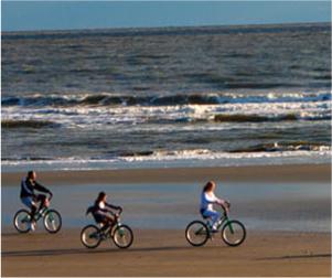 181-rec-rental-bike-jpg